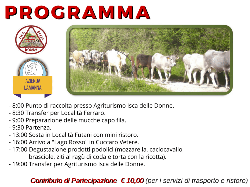 programma 1 transumanza